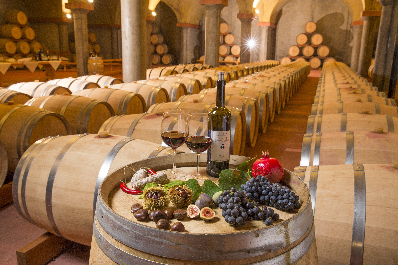 05-Cantina vinicola - Losone - 1 (© Ticino Turismo - foto Christof Sonderegger).jpg
